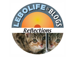 LL logo Reflections
