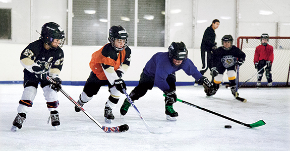 Mt. Lebanon Recreation Department has leagues and classes for just about every age of hockey player. Classes include power skating, parent/child hockey, adult drills and skills and a basic learn to skate class.