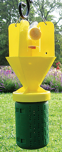 heromone traps may end up leaving you with more bugs in your yard than you had before.
