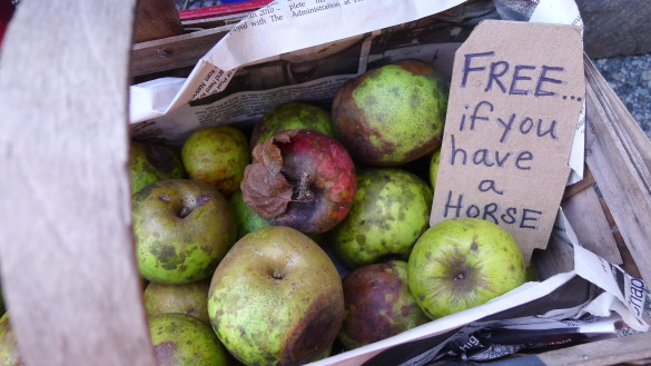 Her Bold Farm had this special offer on its farthest-from-perfect apples last week at the Mt. Lebanon Lions Farmers Market. One little girl asked if she could have an apple even though she doesn't own a horse, but rather, a pony.