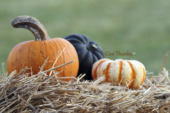 pumpkins fall give thanks 580px