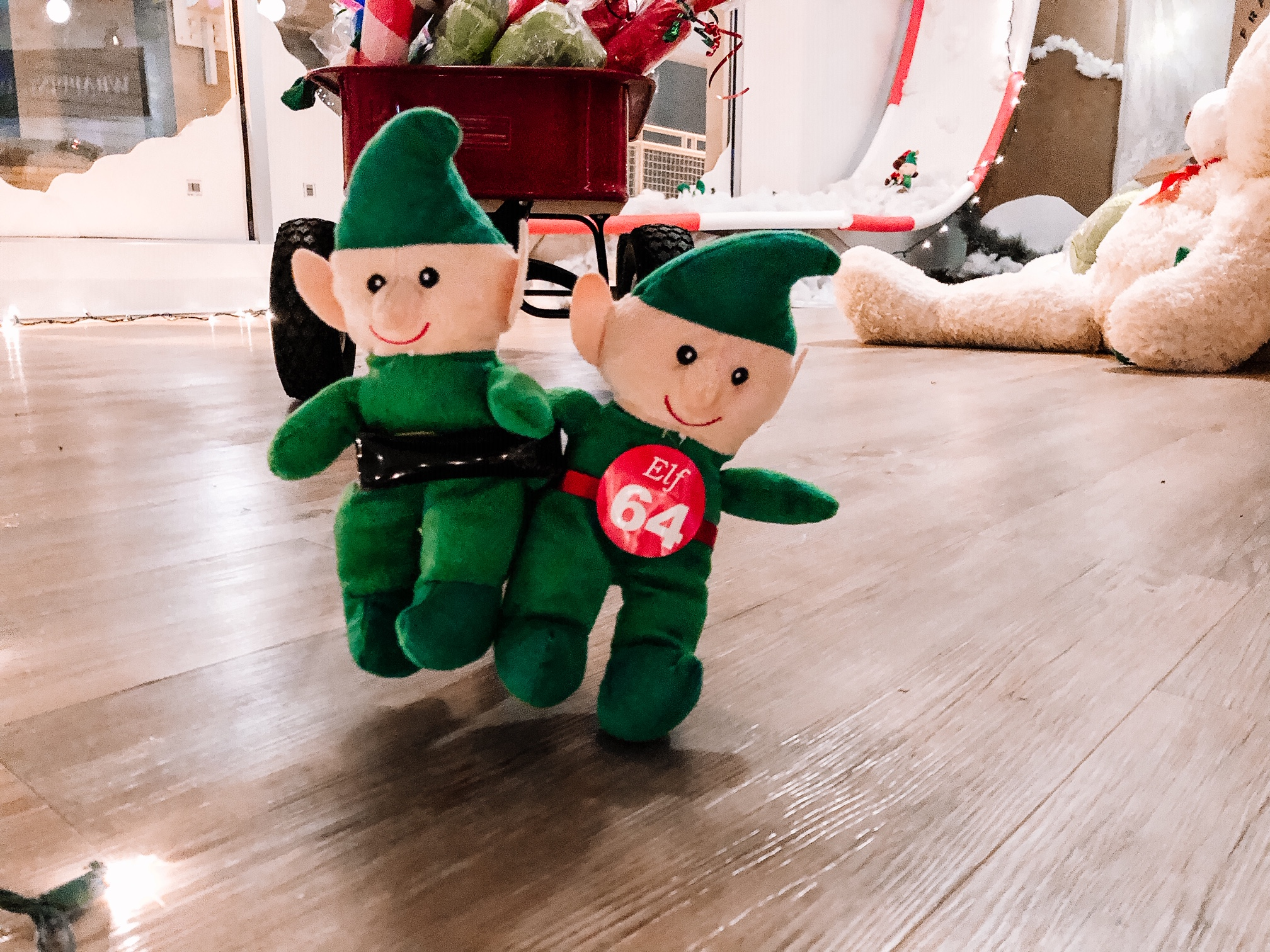 Kids are asked to snap a photo of the elves to help save them this holiday season.