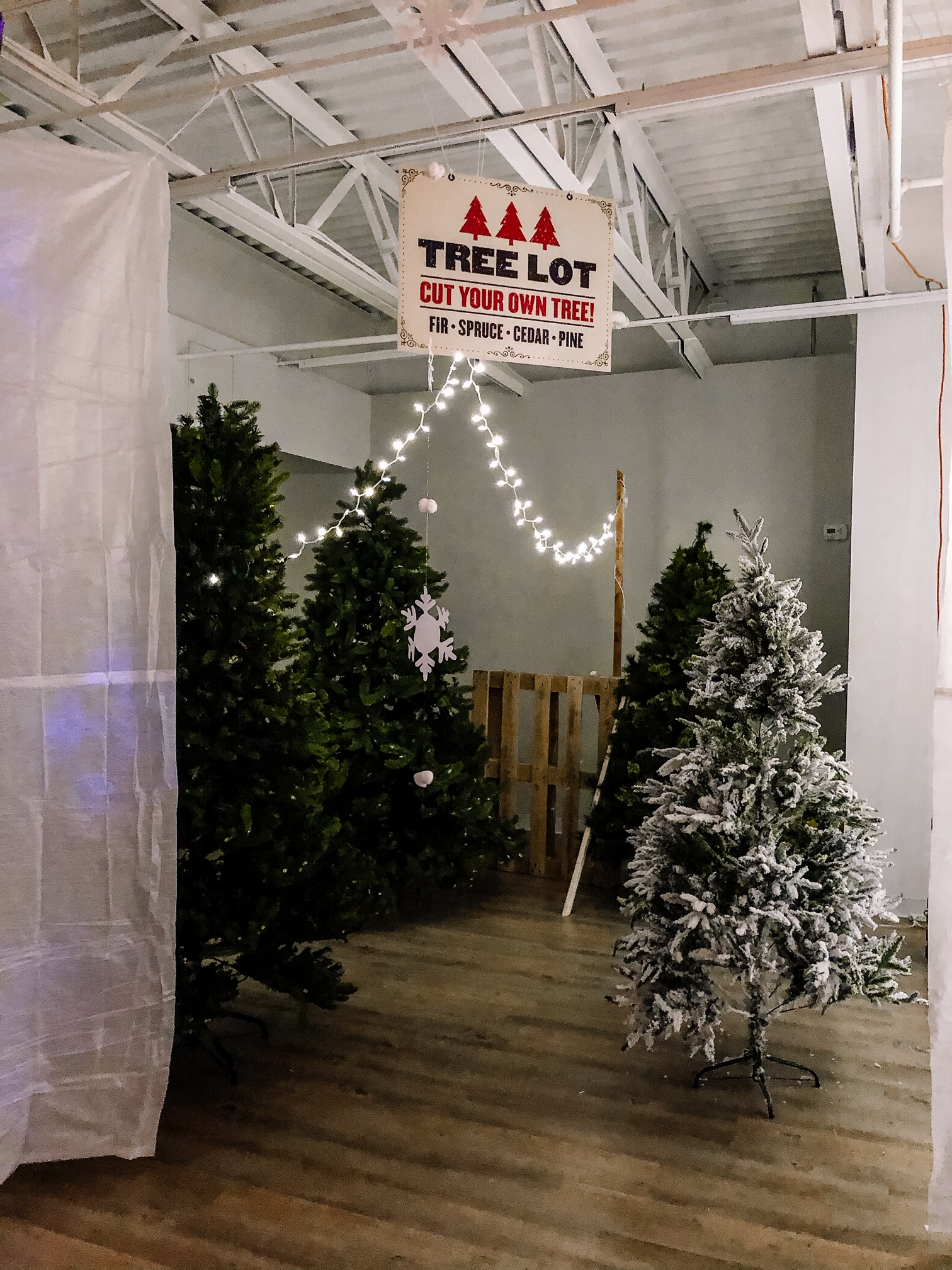 The Elf Workshop includes a tree lot.