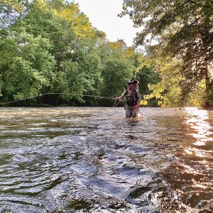 A man stands knee-deep in a river, flyfishing with the sun overhead.