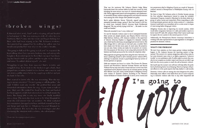"""A scan of the article """"broken wings"""" by laura pace lilly."""